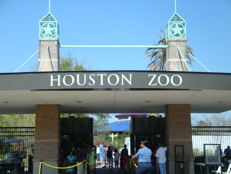 Nov 27,  · Owner description: The Houston Zoo provides a fun, unique, and inspirational experience fostering appreciation, knowledge, and care for the natural world. Essentially a small city encompassing a world of ecosystems and experiences, the Houston Zoo is 4/4.