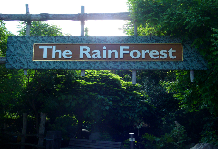 rainforestsign